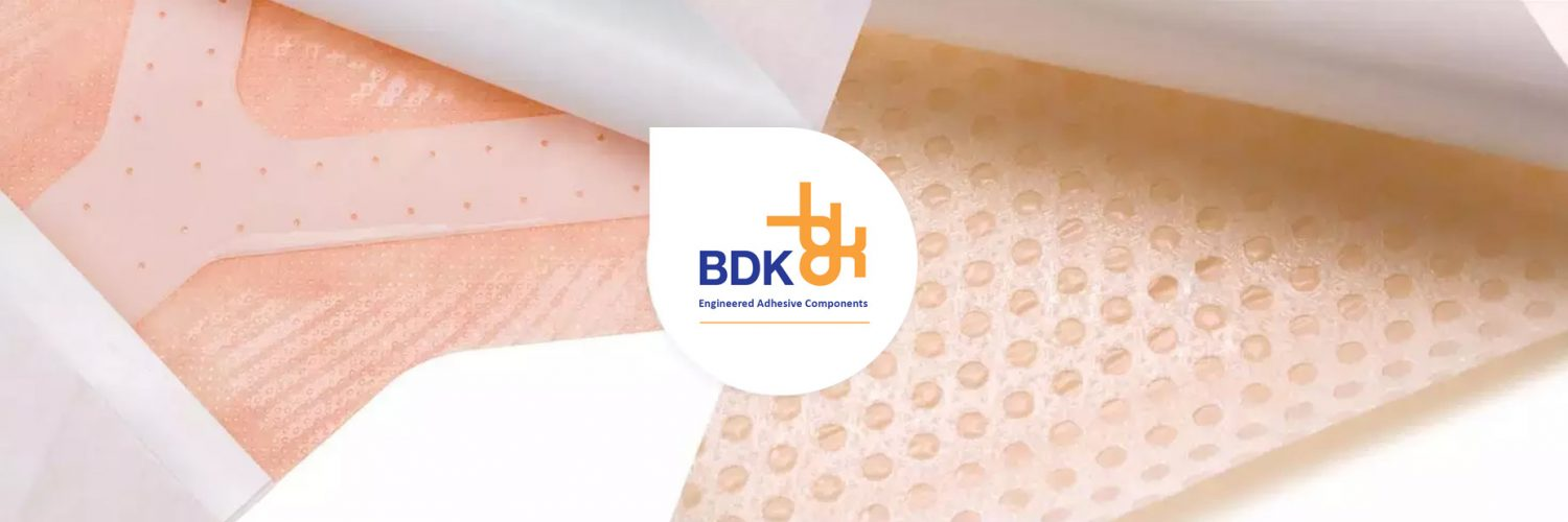 BDK – Innovative, Technical and Highly Experienced Healthcare Solutions Provider